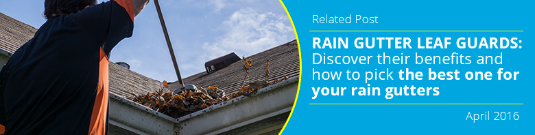 Rain Gutter Cleaning Related
