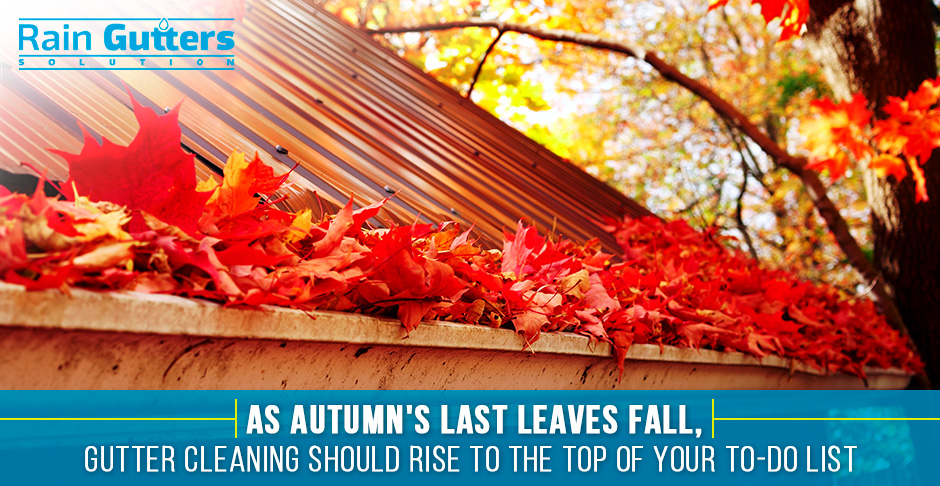 Rain Gutter Cleaning During the Fall
