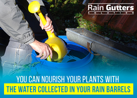 How Do Rain Barrels Work Gardening with Rain Water Collected