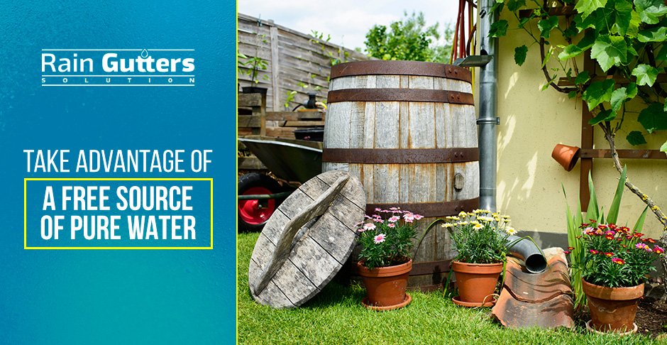 How Do Rain Barrels Work Garden with Water Collection System
