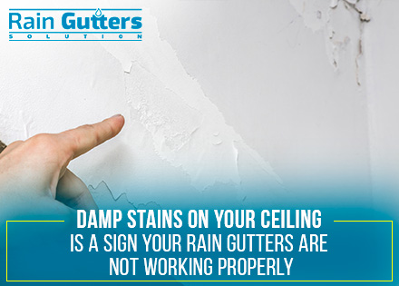 Damp Stains or Bubbling Paint on a Ceiling