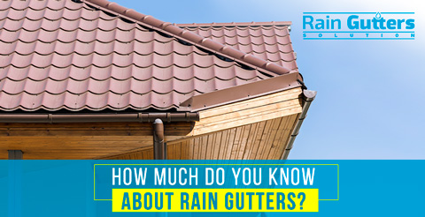 10 Fun Facts About Rain Gutters