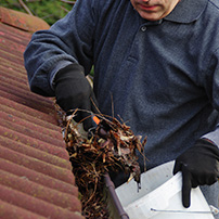 Cleaning and Repairing Rain Gutter System