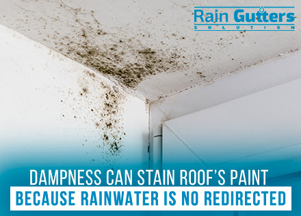 Dampness is Why Rain Gutters are Essential for Any Property