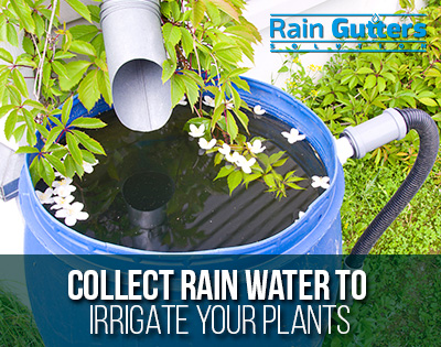 A Rain Gutters Repair Allows To Collect Rain Water