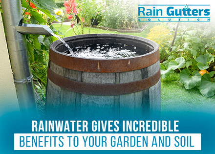 Gutter Barrel Rainwater Collection System in Garden