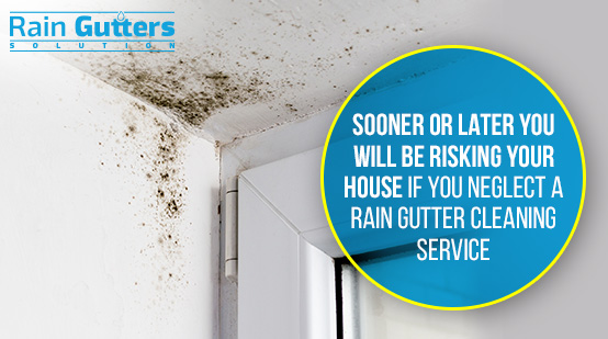 House Without a Rain Gutter Cleaning Service Dampness
